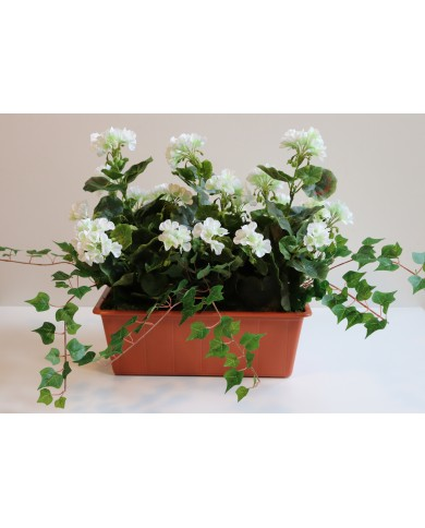 künstliche Geranien, weiss (3 Stk) im 40 cm Balkon- Kasten, Terracota. UV Geschützt!