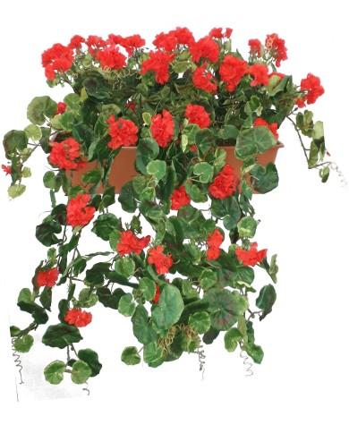 künstliche Geranien Hänger, rot (3 Stk) im 60 cm Balkon- Kasten, Terracota. UV-Geschützt!