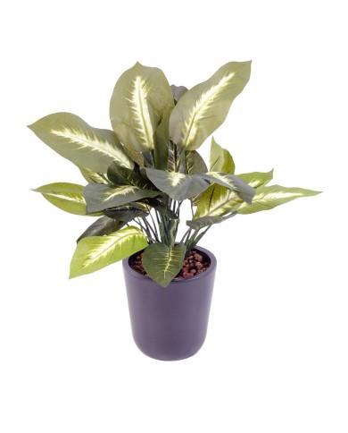 künstliche Dieffenbachia, ohne Topf - mit Einsteckstab, ca. 40cm