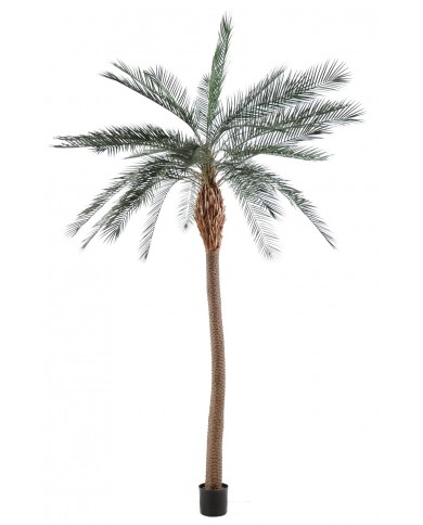 künstliche Phönix Palme Giant, ca. 340cm
